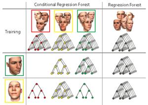 随机森林在人体识别中的应用图片