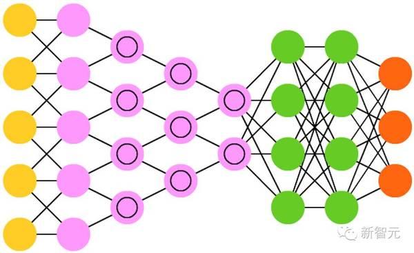 卷积神经网络(cnn)或深度卷积神经网络(dcnn)