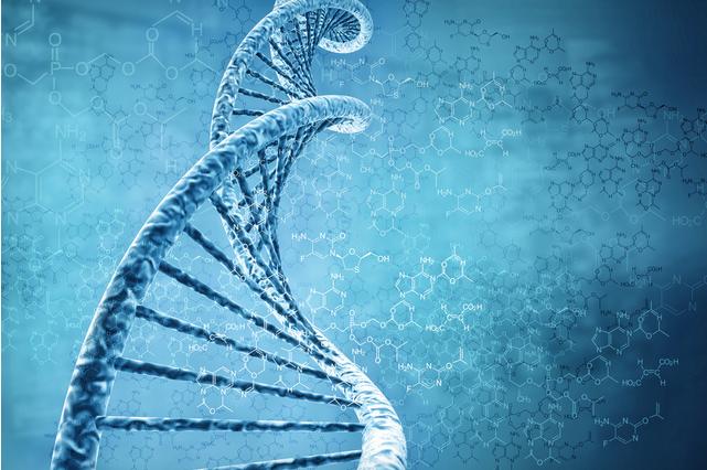编写人造DNA分子的编程语言,可用于诊断疾病和输送药物