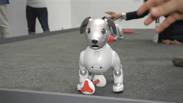 苦等18年后:索尼新机器狗AIBO亮相 更神奇了